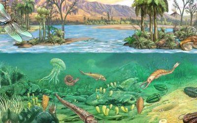 Paleozoicum